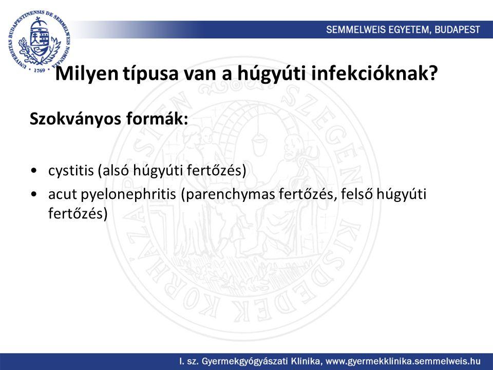 Milyen típusa van a húgyúti infekcióknak? Szokványos formák: cystitis (alsó húgyúti fertőzés) acut pyelonephritis (parenchymas fertőzés, felső húgyúti