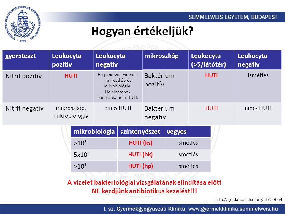 Hogyan értékeljük? mikroszkópLeukocyta (>5/látótér) Leukocyta negatív Baktérium pozitív HUTIismétlés Baktérium negatív HUTInincs HUTI gyorstesztLeukoc