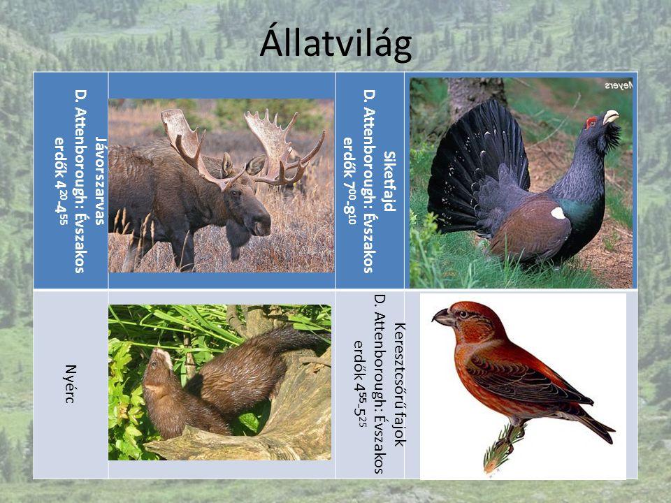 Állatvilág Jávorszarvas D. Attenborough: Évszakos erdők 4 20 -4 55 Siketfajd D. Attenborough: Évszakos erdők 7 00 -8 10 Nyérc Keresztcsőrű fajok D. At