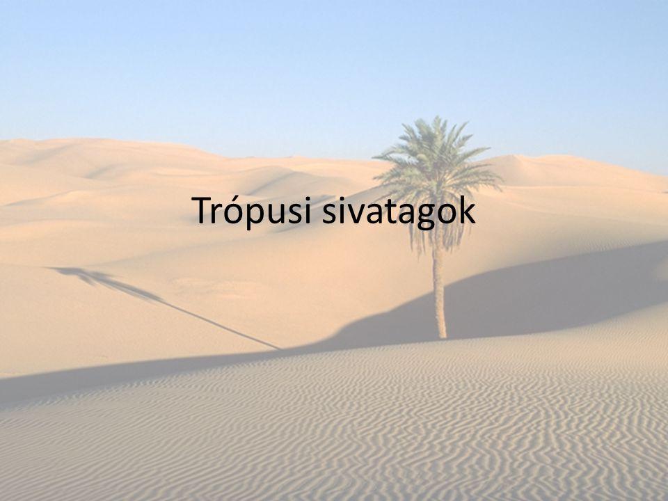 Trópusi sivatagok