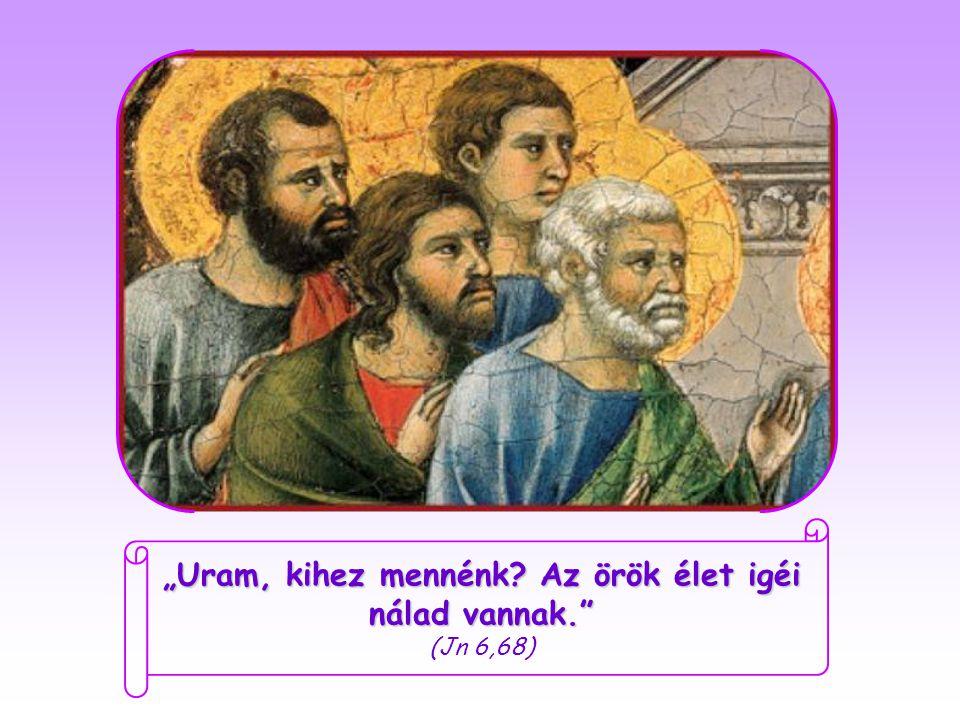 """Amikor Jézus látta, hogy tanítványai elfordulnak tőle és már nem tartanak vele, a tizenkét apostolhoz fordult: """"Ti is el akartok menni? Péter, akit teljesen lenyűgözött, amit az első találkozásuk óta hallott, és amiért örökre elkötelezte magát Jézus mellett, mindnyájuk nevében válaszolta:"""