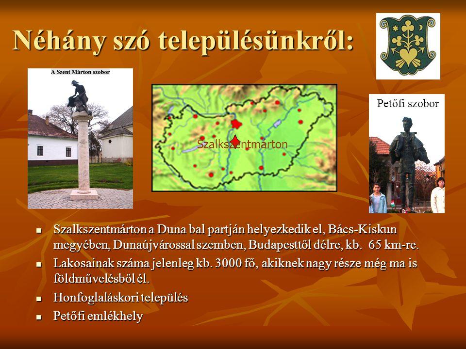 Néhány szó településünkről: Szalkszentmárton a Duna bal partján helyezkedik el, Bács-Kiskun megyében, Dunaújvárossal szemben, Budapesttől délre, kb. 6