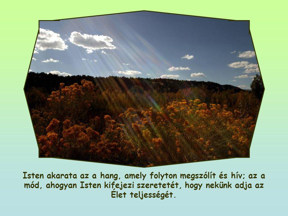 Az Ő akarata az, hogy éljünk, hogy örömmel adjunk hálát neki az élet ajándékaiért. Nem úgy van, mint ahogy sokszor mi gondoljuk: nem rendelkezés, hogy