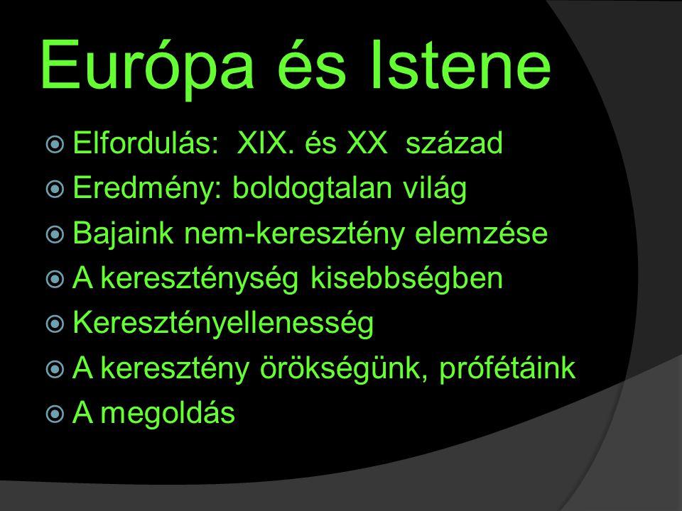 Környezetrombolás  1900-2000: 1,6 md – 6,2 md ember  Európa többet termel, többet fogyaszt  A máshol élők és a még nem élők kárára  Bush: az amerikai életforma nem alku tárgya  És mi engedünk az európaiból?