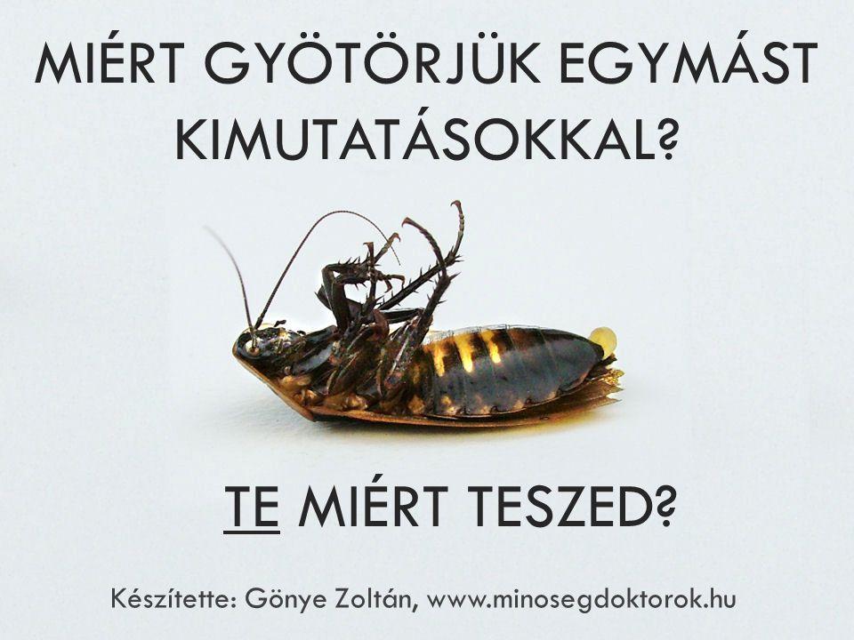 MIÉRT GYÖTÖRJÜK EGYMÁST KIMUTATÁSOKKAL? Készítette: Gönye Zoltán, www.minosegdoktorok.hu TE MIÉRT TESZED?