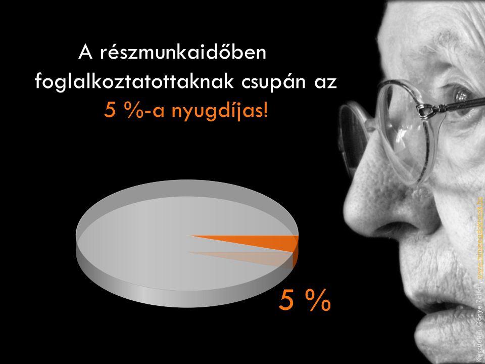 A részmunkaidőben foglalkoztatottaknak csupán az 5 %-a nyugdíjas! 5 % Készítette: Gönye Zoltán, www.minosegdoktorok.huwww.minosegdoktorok.hu