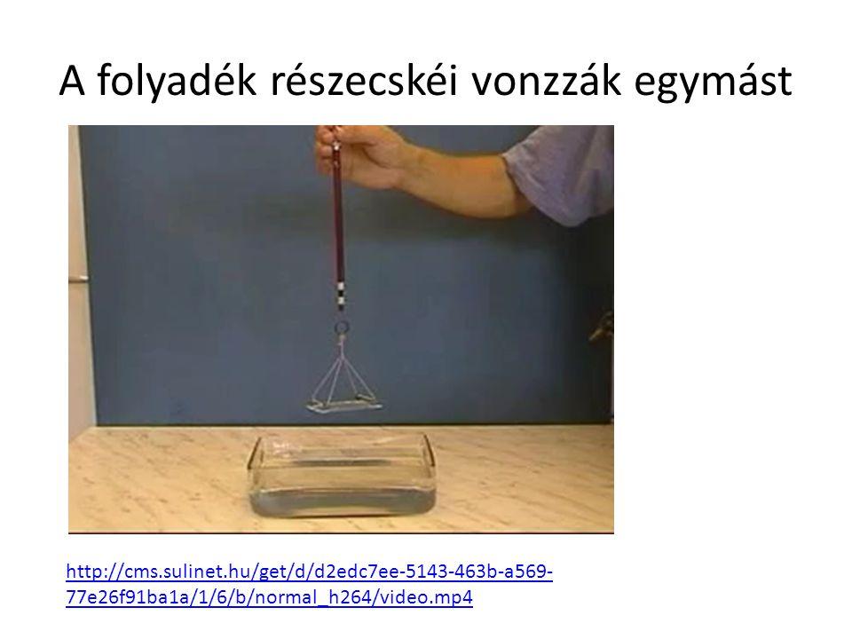 A folyadék részecskéi vonzzák egymást http://cms.sulinet.hu/get/d/d2edc7ee-5143-463b-a569- 77e26f91ba1a/1/6/b/normal_h264/video.mp4