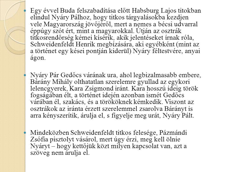 Egy évvel Buda felszabadítása előtt Habsburg Lajos titokban elindul Nyáry Pálhoz, hogy titkos tárgyalásokba kezdjen vele Magyarország jövőjéről, mert