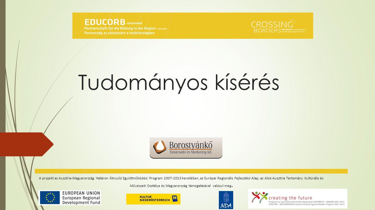 Interjú-kérdéssor intézményvezetők részére  Oktatási modell bemutatása  Intézményi nyelvoktatással kapcsolatos általános tapasztalatok  Program beilleszthetősége a nevelési/oktatási programba  Működés/működtethetőség jogi keretfeltételei, jogszabályi háttere  Humán erőforrás, finanszírozás biztosítása az intézmény részéről  Az óvodai és az iskolai nyelvoktatás közötti kapcsolat  Az idegen-nyelvtanulás előnyei, esetleges hátrányai  Utazó pedagógus integrálása az intézmény életébe  Javaslatok a modell hosszú távú fenntarthatósága érdekében