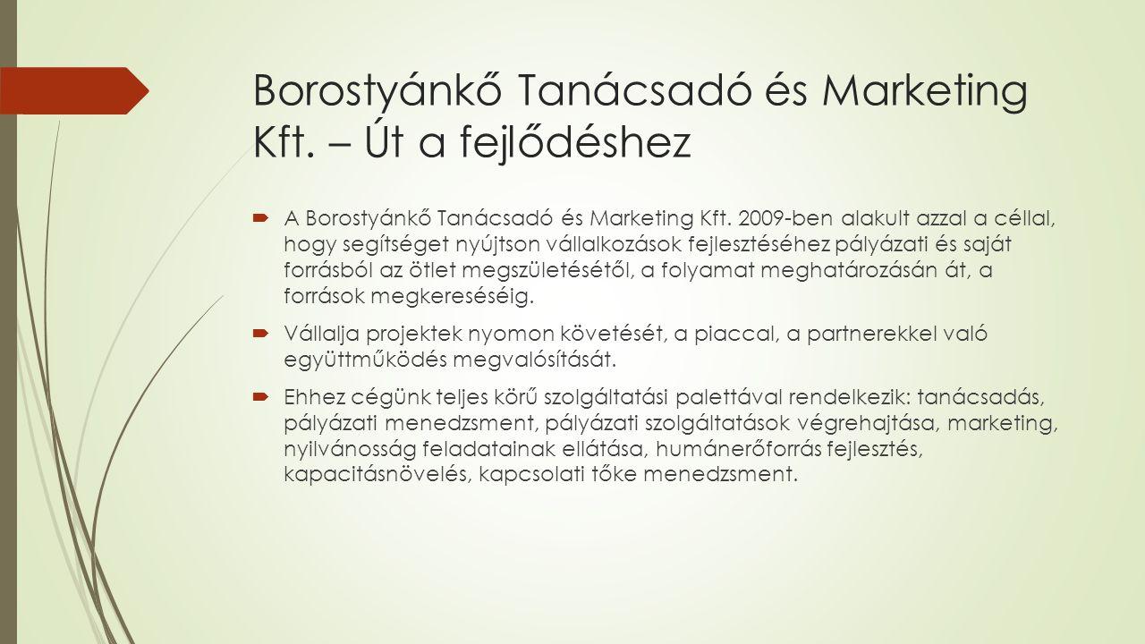 Szolgáltatásaink:  Vezetési tanácsadás  Vállalkozás fejlesztés  Humánerőforrás fejlesztés, kapacitásnövelés  Kapcsolati tőke menedzsment  Pályázati menedzsment  Pályázati szolgáltatások végrehajtása  Teljes körű marketing és nyilvánosság  Társadalmi felelősségvállalás elősegítése