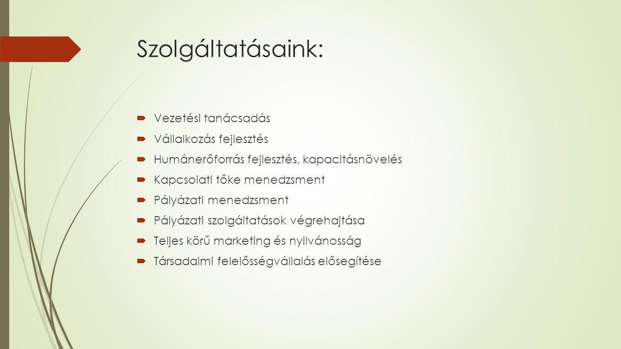 Interjú-kérdéssor utazó pedagógusok részére  Oktatási modell bemutatása, más nyelvi oktatási formáktól való megkülönböztetése  Nyelvi foglalkozások beillesztése a nevelési programba/tantervbe  Utazó pedagógus és óvónők közötti információáramlás biztosítása  Foglalkozások/nyelvoktatás módszertana  Tananyag  Eszközök, segédanyagok használata  Az óvodai nyelvtanulás hatása az iskolai nyelvtanulásra  A megtanult ismeretek és kötelező nyelvoktatás kapcsolata  Javaslatok a modell hosszú távú fenntarthatósága érdekében