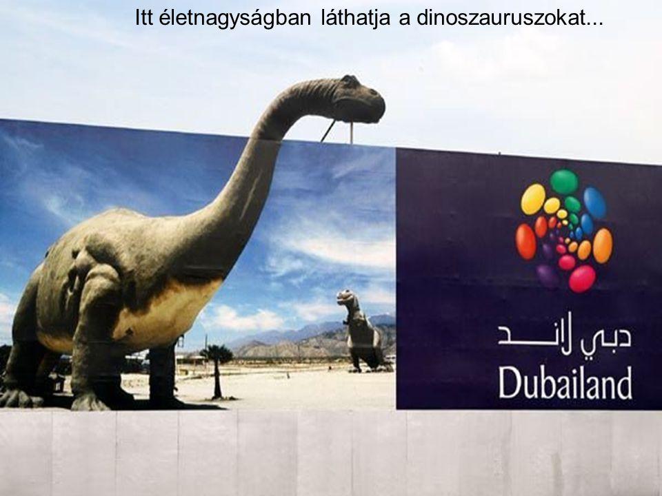 """Ez a világ legnagyobb szórakoztató- parkja és 2009-re lesz kész """"Dubailand"""" néven."""