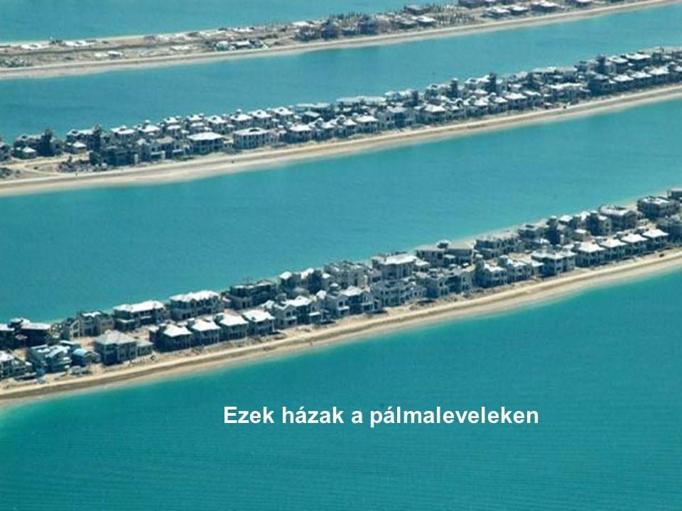 """A Jumeirah Palm a """"legkisebb pálma a tervasztalon..."""