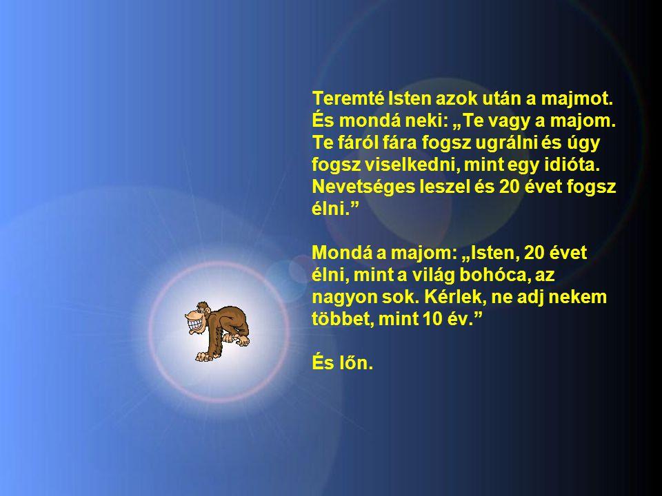 """Teremté Isten azok után a majmot.És mondá neki: """"Te vagy a majom."""