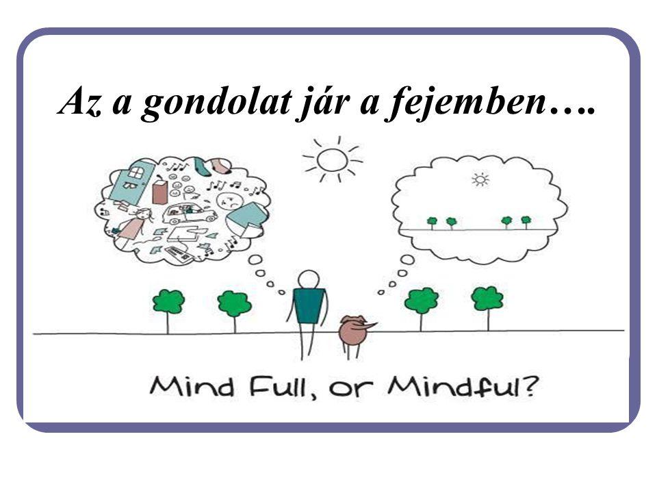 Az a gondolat jár a fejemben….