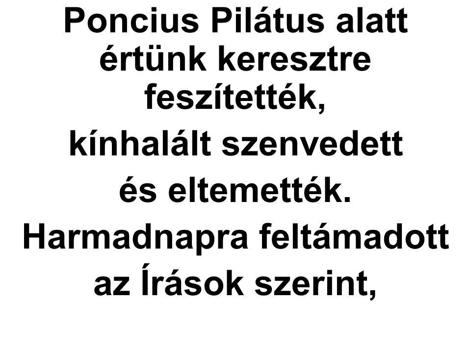 Poncius Pilátus alatt értünk keresztre feszítették, kínhalált szenvedett és eltemették. Harmadnapra feltámadott az Írások szerint,