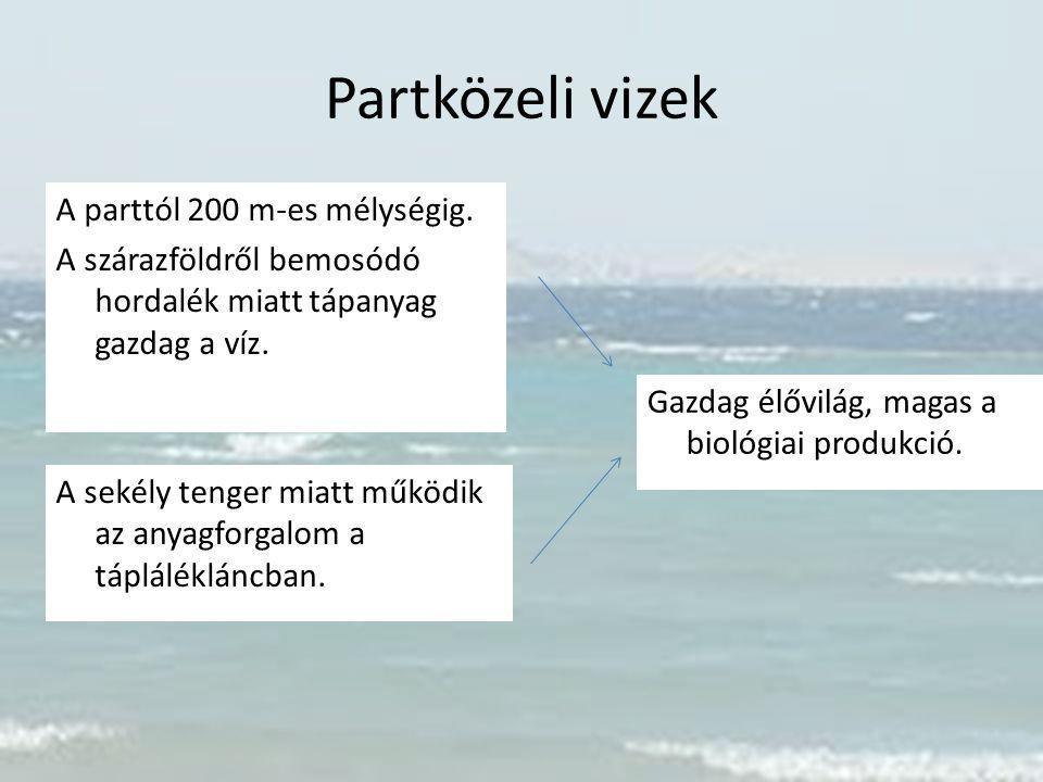 Partközeli vizek A parttól 200 m-es mélységig. A szárazföldről bemosódó hordalék miatt tápanyag gazdag a víz. A sekély tenger miatt működik az anyagfo