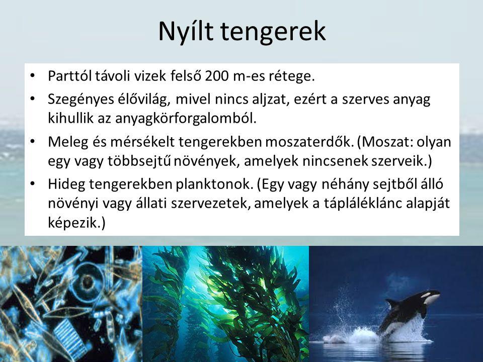 Nyílt tengerek Parttól távoli vizek felső 200 m-es rétege. Szegényes élővilág, mivel nincs aljzat, ezért a szerves anyag kihullik az anyagkörforgalomb