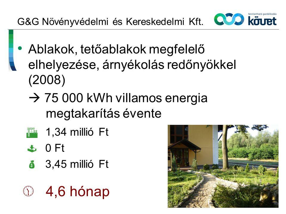Print Sisters Kft.Energiafelhasználás optimalizálása (2004)  Évente kb.