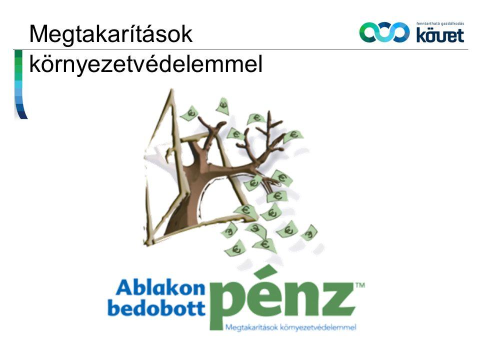 """Ablakon Bedobott Pénz Program 10 éves jubileum (2012) Cél: bebizonyítsuk, hogy a környezetvédelemre fordított összeg nem ablakon kidobott pénz Megvalósult intézkedések, melyek egyszerre hoztak környezeti ÉS gazdasági hasznot Nyilvánosság, """"Bajnokok elismerése."""