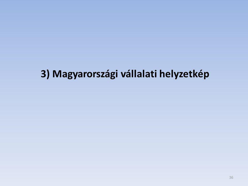 36 3) Magyarországi vállalati helyzetkép