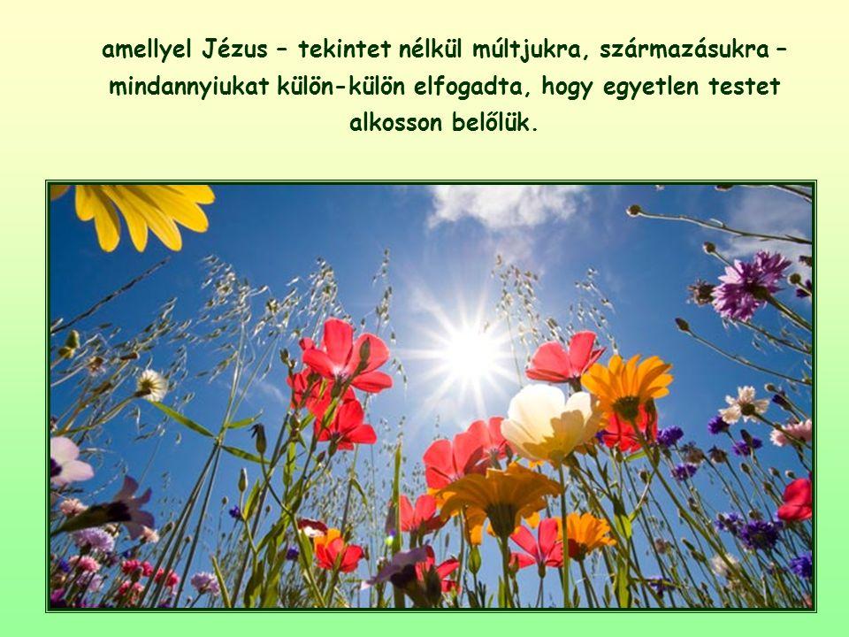 Az a tény, hogy Jézus meghívta őket a hitre, átadva nekik saját Lelke ajándékát, kézzelfogható jele volt annak a szeretetnek,