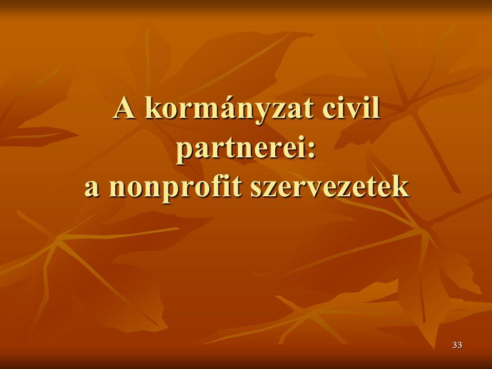 33 A kormányzat civil partnerei: a nonprofit szervezetek