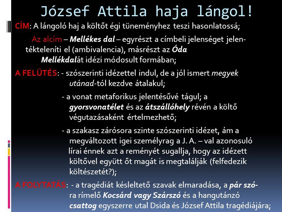 József Attila haja lángol! CÍM: A lángoló haj a költőt égi tüneményhez teszi hasonlatossá; Az alcím – Mellékes dal – egyrészt a címbeli jelenséget jel