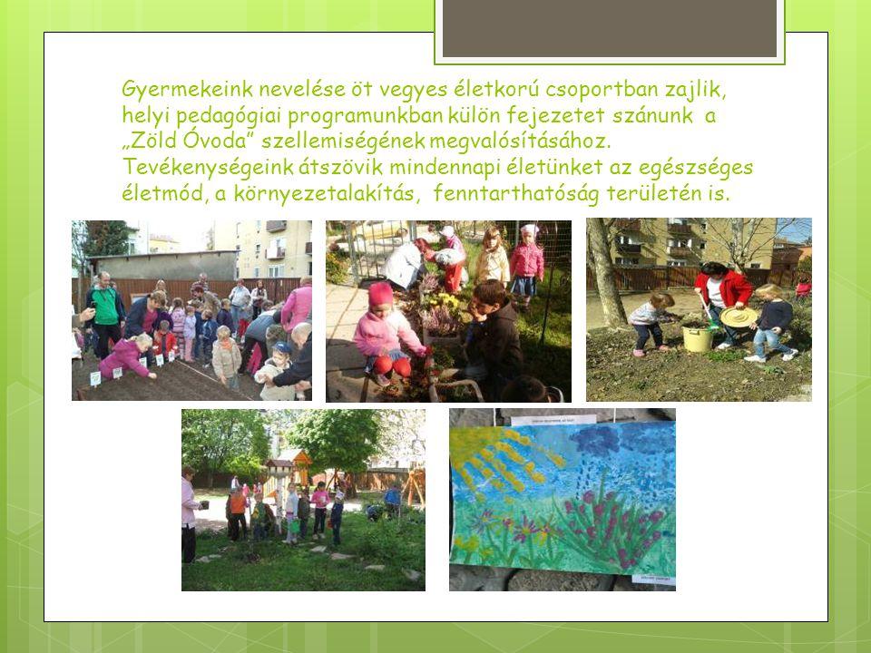 """Az óvodánkban 2006-ban megalakult """"Értünk - környezeti nevelés az óvodában munkaközösség Pécs város összes Zöld Óvodájával közösen működik (jelenleg 11 óvoda)."""