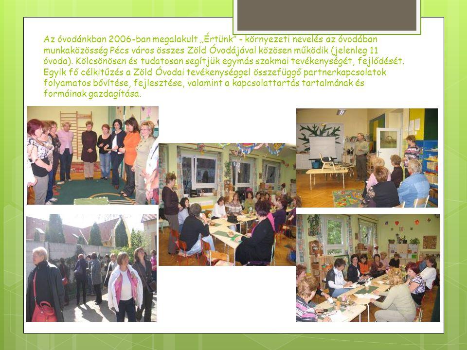 A szülőket, gyermekeket, óvodánkba látogatókat a Zöld faliújságon tájékoztatjuk az aktuális eseményekről.