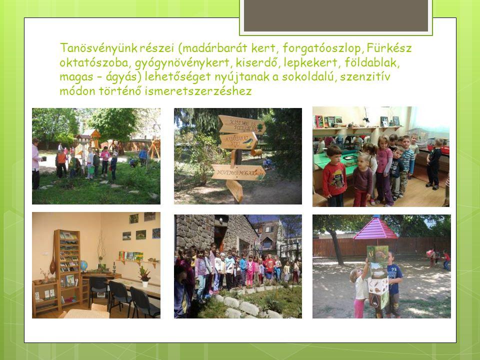 Rendszeres kapcsolatban állunk számos civil szervezettel és bekapcsolódunk programjaikba, képzéseikbe, pályázatokba: Ökováros – Ökorégió Alapítvány Pécs LÉPJ.