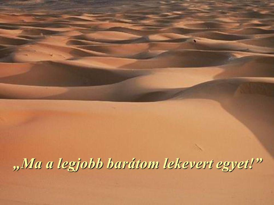 Mentek tovább a sivatagban. Egy oázishoz értek, ahol elhatározták, hogy megfürödnek.