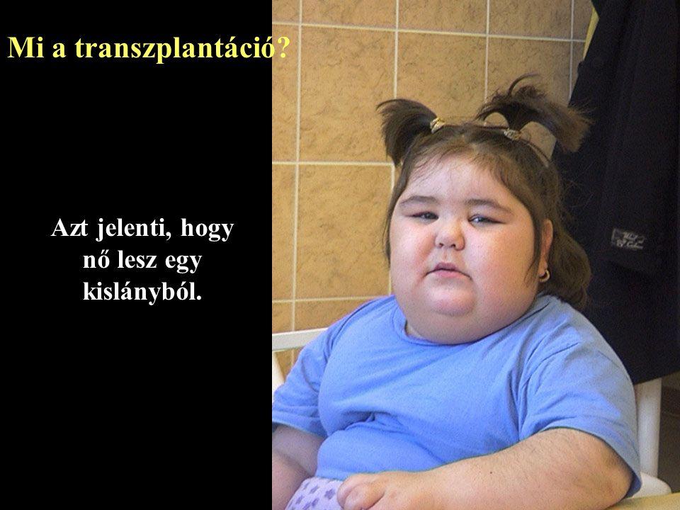 Mi a transzplantáció.