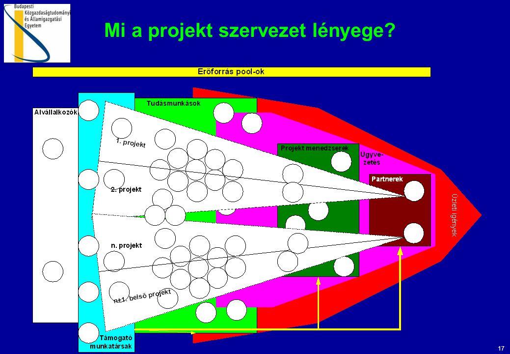 17 Mi a projekt szervezet lényege?