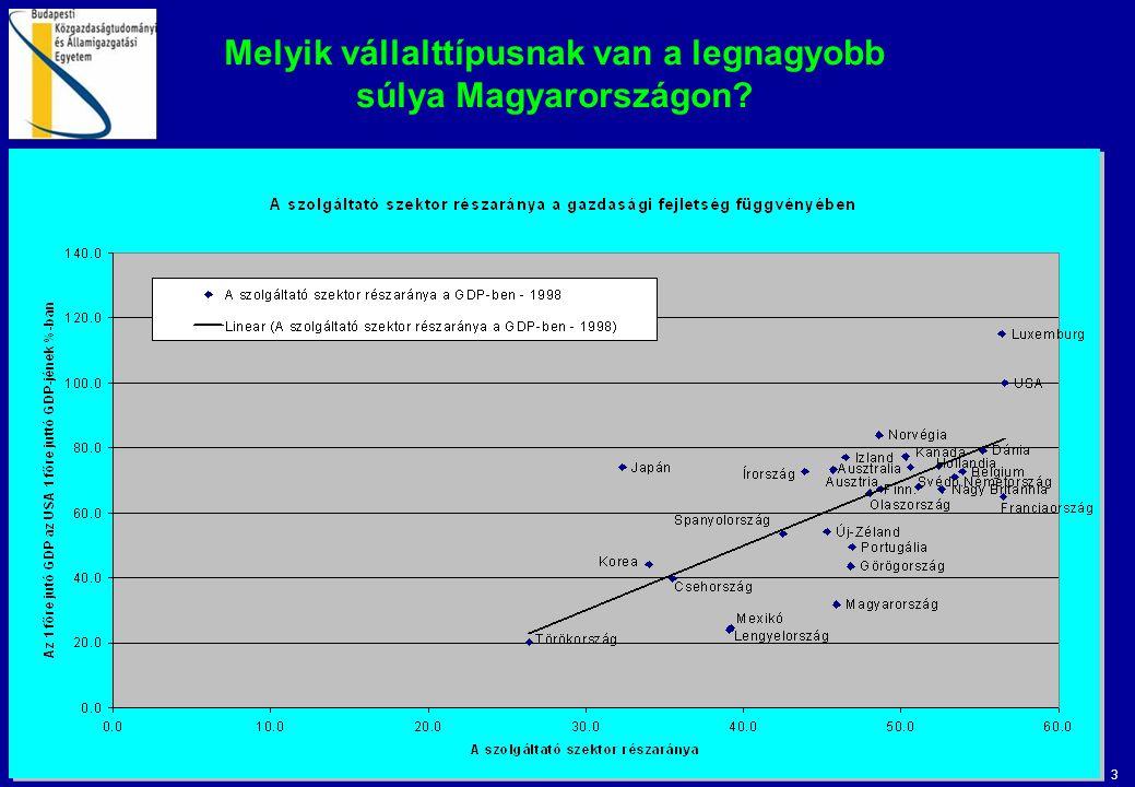 3 Melyik vállalttípusnak van a legnagyobb súlya Magyarországon?