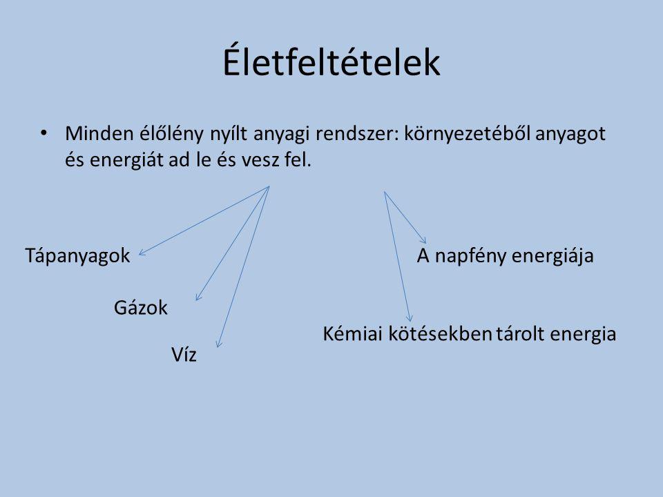 Életfeltételek Minden élőlény nyílt anyagi rendszer: környezetéből anyagot és energiát ad le és vesz fel. Tápanyagok Gázok Víz Kémiai kötésekben tárol