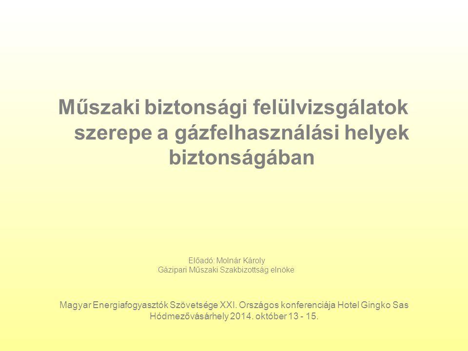 Műszaki biztonsági felülvizsgálatok szerepe a gázfelhasználási helyek biztonságában Magyar Energiafogyasztók Szövetsége XXI.
