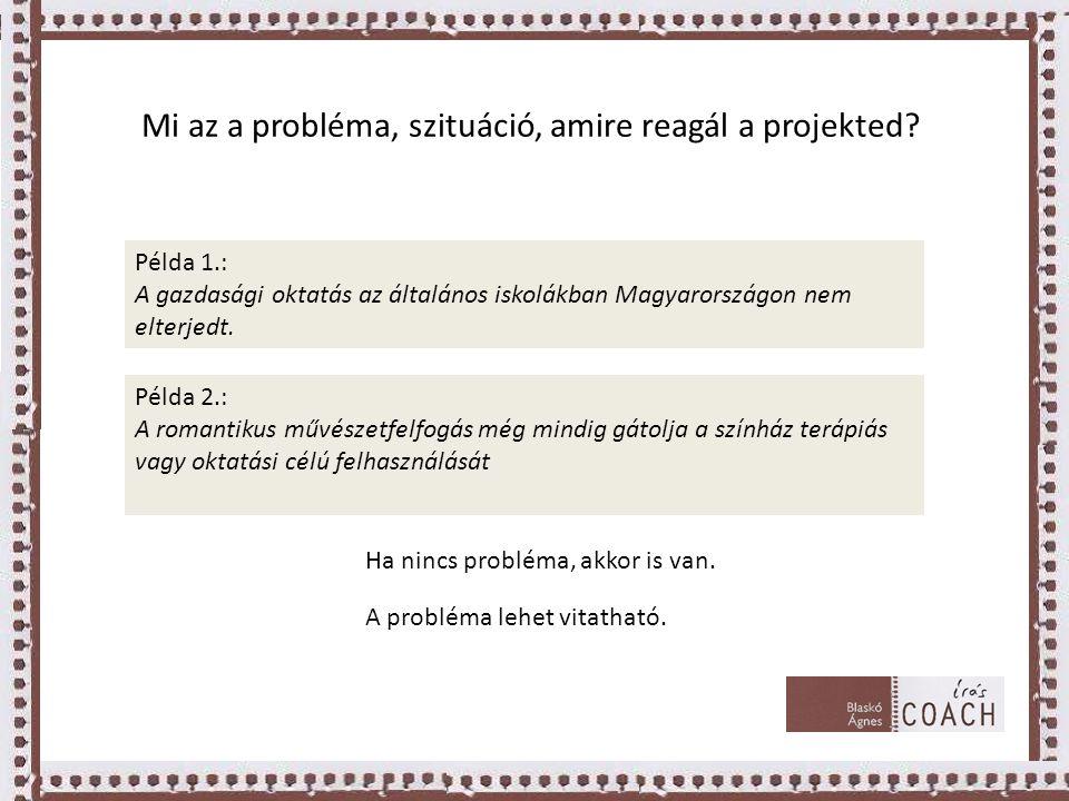 Mi az a probléma, szituáció, amire reagál a projekted.