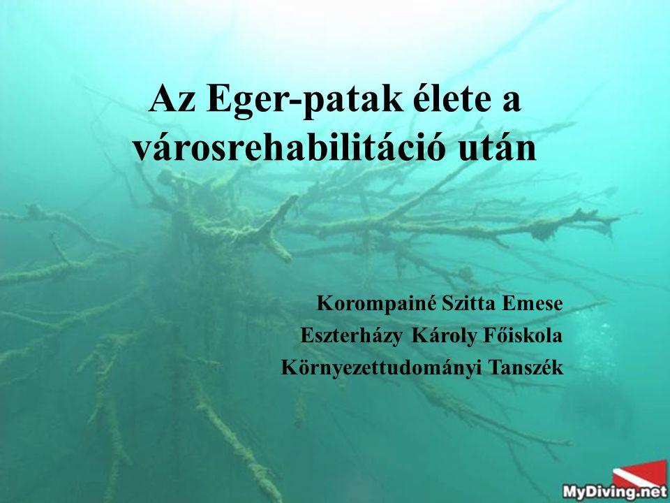 Az Eger-patak élete a városrehabilitáció után Korompainé Szitta Emese Eszterházy Károly Főiskola Környezettudományi Tanszék