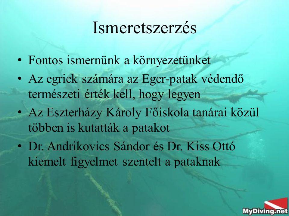 Ismeretszerzés Fontos ismernünk a környezetünket Az egriek számára az Eger-patak védendő természeti érték kell, hogy legyen Az Eszterházy Károly Főiskola tanárai közül többen is kutatták a patakot Dr.