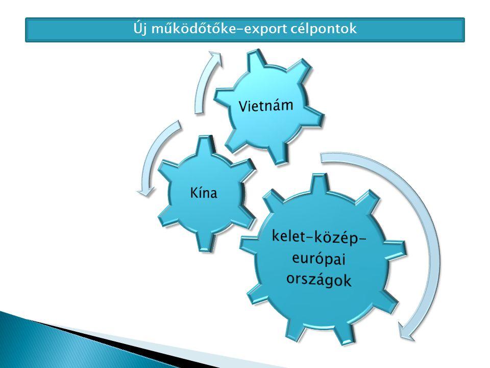 Új működőtőke-export célpontok