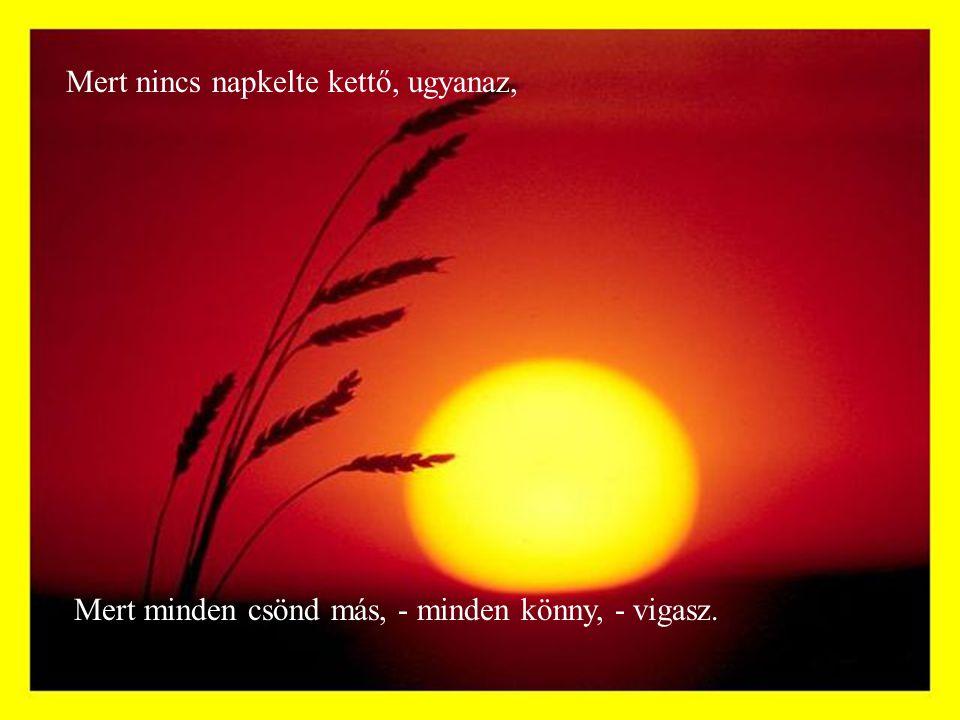 Mert nincs napkelte kettő, ugyanaz, Mert minden csönd más, - minden könny, - vigasz.