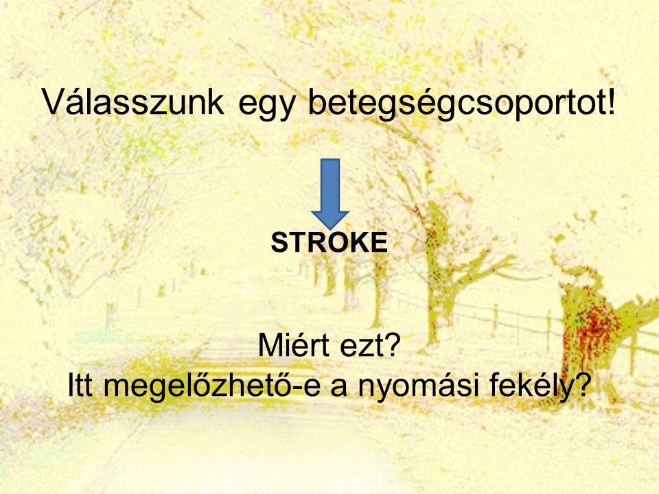 Stroke A vezető halálokok között a harmadik A kórházak 2005-ben több mint 60.000 stroke esetet láttak el Igen jelentős a magyarországi stroke halandósági és megbetegedési többlet Európa fejlett államaihoz képest.