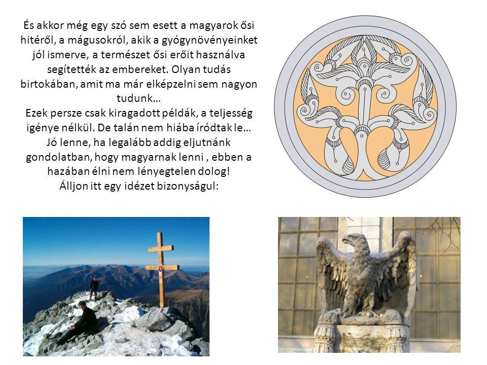 És akkor még egy szó sem esett a magyarok ősi hitéről, a mágusokról, akik a gyógynövényeinket jól ismerve, a természet ősi erőit használva segítették