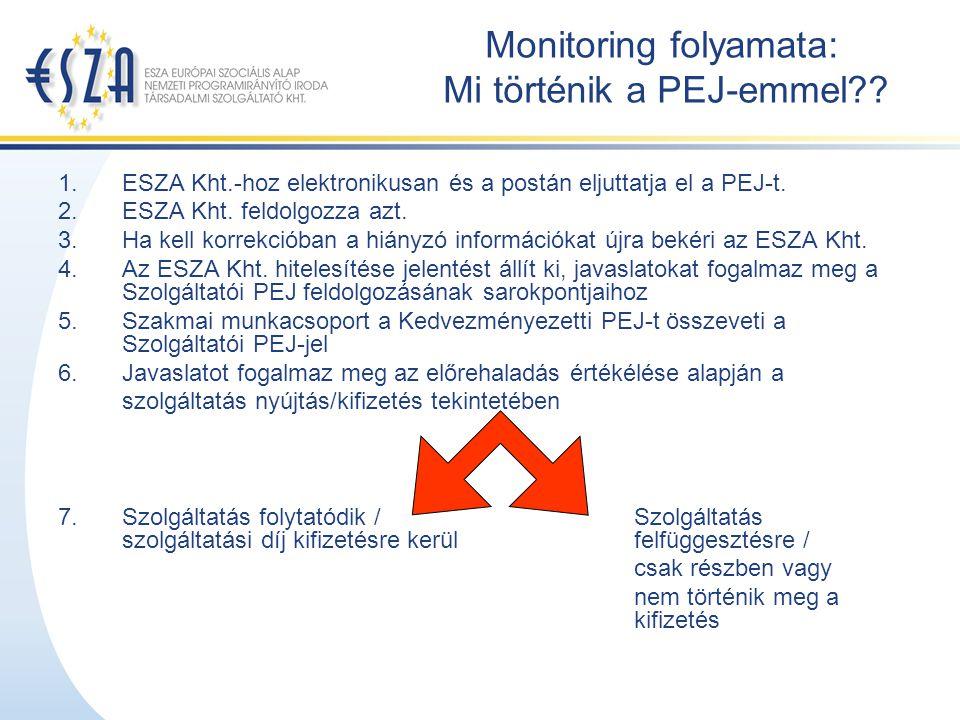 Monitoring folyamata: Mi történik a PEJ-emmel?.