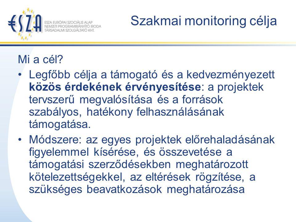 Szakmai monitoring célja Mi a cél.