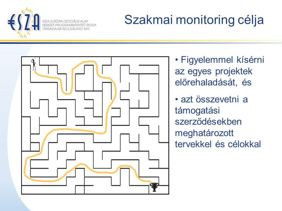 Szakmai monitoring célja Figyelemmel kísérni az egyes projektek előrehaladását, és azt összevetni a támogatási szerződésekben meghatározott tervekkel és célokkal