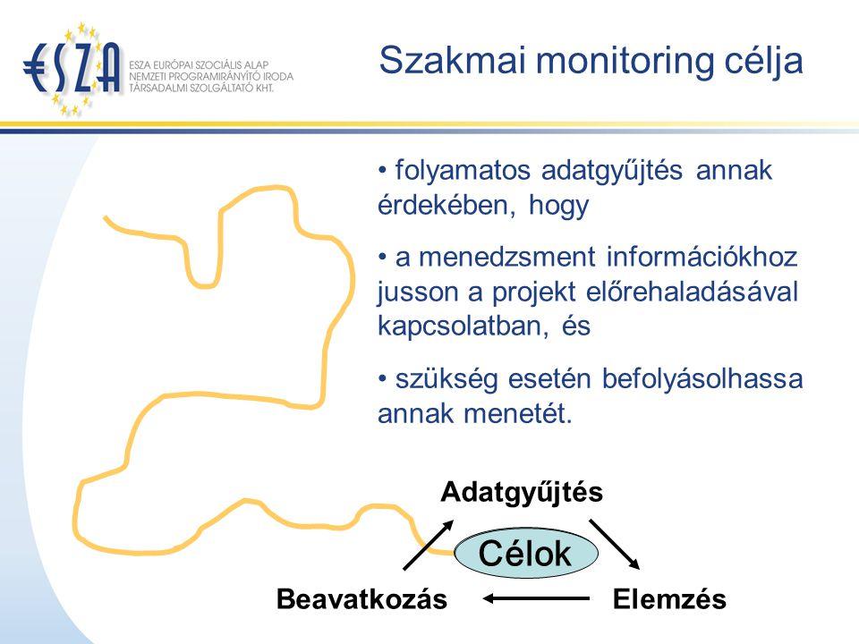 Szakmai monitoring célja Adatgyűjtés ElemzésBeavatkozás Célok folyamatos adatgyűjtés annak érdekében, hogy Célok a menedzsment információkhoz jusson a projekt előrehaladásával kapcsolatban, és szükség esetén befolyásolhassa annak menetét.