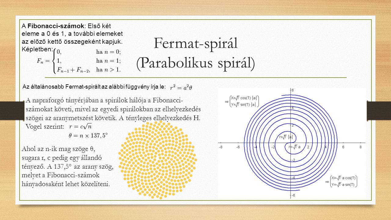 Fermat-spirál (Parabolikus spirál) Az általánosabb Fermat-spirált az alábbi függvény írja le: A napraforgó tányérjában a spirálok hálója a Fibonacci-