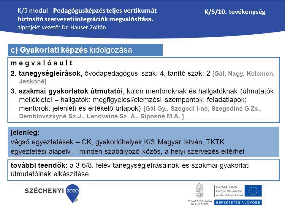 K/5 modul - Pedagógusképzés teljes vertikumát biztosító szervezeti integrációk megvalósítása. alprojekt vezető: Dr. Hauser Zoltán K/5/10. tevékenység